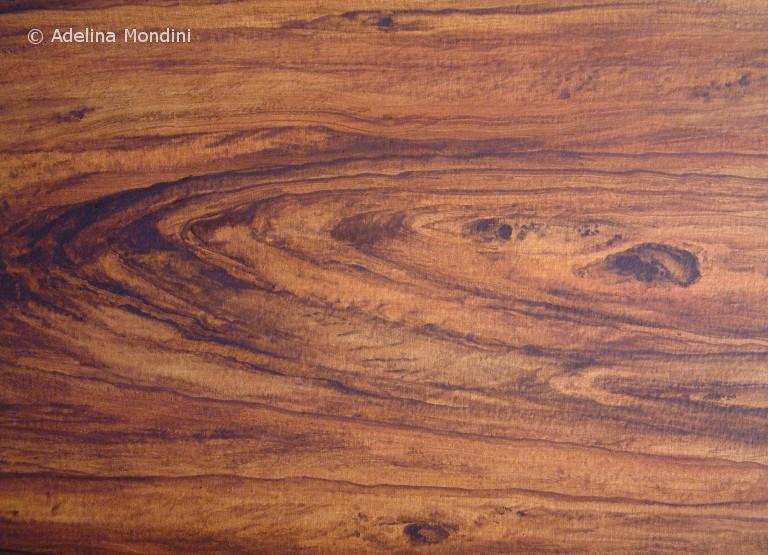 Imitazione pittorica legno
